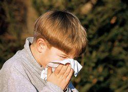 Дієта проти алергії на пилок (полінозу)