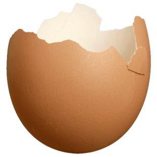 Яєчна шкаралупа як добриво