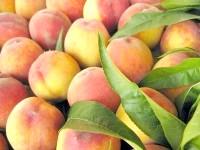 Калорійність персика