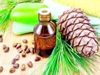 Кедрова олія для схуднення