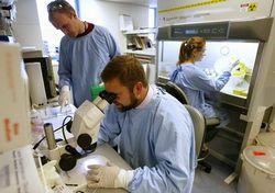 Терапія стовбуровими клітинами