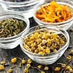 Трави і чаї, корисні для печінки