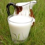 Вчені з'ясували, що незбиране молоко дуже корисно для серця