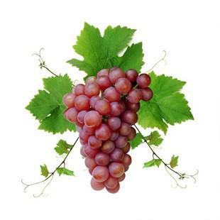 Бачити у сні виноград