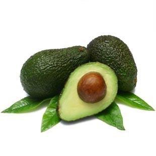 Вирощування авокадо в домашніх умовах